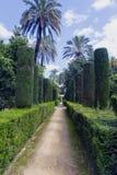 Vista vertical dos jardins do palácio real do ZAR do ¡ de Alcà em Sevilha na Espanha imagem de stock