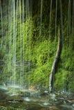 A vista vertical dos riachos em Wadsworth cai, Middlefield, Conne Fotografia de Stock