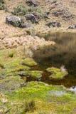 Vista verticale di un lago nelle montagne Fotografia Stock