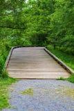 Vista verticale di un sentiero costiero accessibile del terreno boscoso di handicap fotografia stock libera da diritti