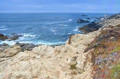 Vista viva stupefacente di area di fioritura della linea costiera pacifica Colpo o Fotografia Stock Libera da Diritti