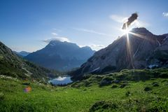 Vista a Zugspitze con il volo della vespa immagine stock libera da diritti