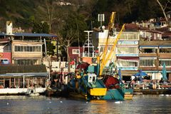 Vista zumata del peschereccio nella baia di Sariyer Sariyer è un distretto di Costantinopoli, all'estremità dello stretto di Bosp immagine stock libera da diritti