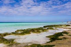 Vistas al mar Imagen de archivo libre de regalías