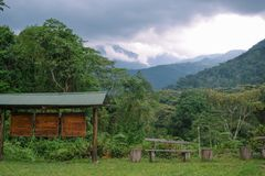 Vistas bonitas na porta do nacional das montanhas de Rwenzori, Uganda imagem de stock
