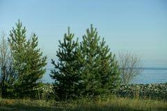 Vistas cênicos do lago, dia do outono Imagem de Stock Royalty Free