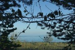 Vistas cênicos do lago, dia do outono Foto de Stock Royalty Free