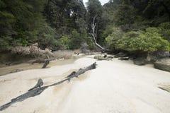 Vistas costeras y rocas de Nueva Zelanda d Y imagen de archivo