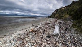 Vistas costeras y rocas de Nueva Zelanda d Y imagenes de archivo