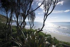 Vistas costeras y rocas de Nueva Zelanda d Y foto de archivo libre de regalías
