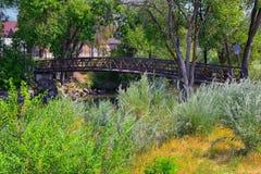 Vistas da ponte da trilha de Jordan River Trail Pedestrian e do trem com árvores circunvizinhas, azeitona de russo, cottonwood e  fotografia de stock