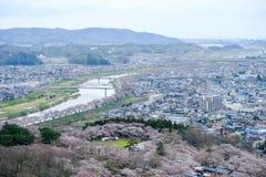 Vistas das flores de cerejeira em Shiroishi RiversideHitome Senbonzakura ou mil árvores de cereja na vista e na cordilheira de Za Fotos de Stock
