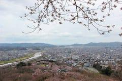 Vistas das flores de cerejeira em Shiroishi RiversideHitome Senbonzakura ou mil árvores de cereja na vista e na cordilheira de Za Foto de Stock Royalty Free