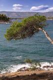 Vistas de Croacia Isla hvar Imagen de archivo libre de regalías