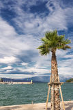 Vistas de Croacia Isla hvar Imagen de archivo