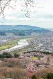 Vistas de flores de cerezo en Shiroishi RiversideHitome Senbonzakura o mil cerezos a primera vista y cordillera de Zao vista Foto de archivo