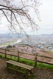 Vistas de flores de cerezo en Shiroishi RiversideHitome Senbonzakura o mil cerezos a primera vista y cordillera de Zao vista Imágenes de archivo libres de regalías