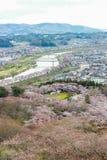 Vistas de flores de cerezo en Shiroishi RiversideHitome Senbonzakura o mil cerezos a primera vista y cordillera de Zao vista Fotos de archivo