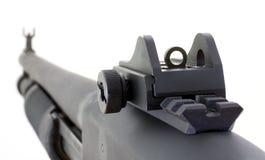 Vistas de la escopeta Foto de archivo