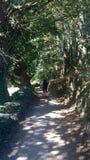 Vistas de la naturaleza mientras que en el camino de Santiago Fotografía de archivo libre de regalías