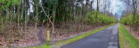 Vistas de la naturaleza y de caminos a lo largo de Shelby Bottoms Greenway y de los rastros naturales del ataque frontal del río  foto de archivo libre de regalías