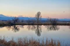 Vistas de la trayectoria que camina de la charca de Josh's, de la puesta del sol reflectora en Broomfield Colorado rodeado por  imagenes de archivo
