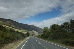 Vistas de las montañas y de las plantas de Nueva Zelanda d Y fotografía de archivo libre de regalías