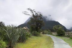 Vistas de montañas y de rocas de Nueva Zelanda fotos de archivo libres de regalías