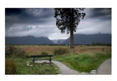 Vistas de montañas y de rocas de Nueva Zelanda d Y fotografía de archivo