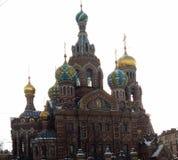 Vistas de St Petersburg Imagen de archivo