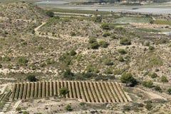 Vistas del campo de Monforte, de Aspe y de Novelda Imagen de archivo