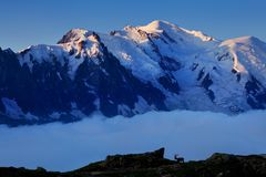 Vistas del glaciar de Mont Blanc de la laca Blanc Atracci?n tur?stica popular Escena pintoresca y magn?fica de la monta?a imágenes de archivo libres de regalías