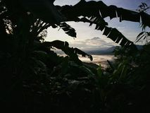 Vistas hermosas por el bosque tropical de Borneo, Sabah, Malasia fotos de archivo