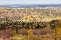 Vistas imponentes del bosque ruso de conífero y de árboles de hojas caducas en el período de oro de otoño imagen de archivo libre de regalías