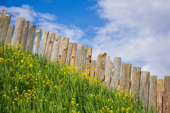 Vistas pastorais da paliçada Foto de Stock Royalty Free