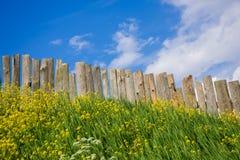 Vistas pastorais na paliçada de madeira Fotos de Stock Royalty Free