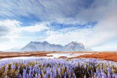 Vistas pitorescas do rio e das montanhas em Islândia imagens de stock
