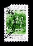 Vistas, serie históricos del Equestrianism y del montar a caballo, circa 1 imágenes de archivo libres de regalías