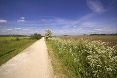 Viste dal sentiero per pedoni del Greenway e dalla ferrovia in disuso della pista ciclabile Fotografie Stock Libere da Diritti