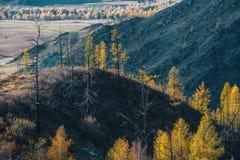 Viste dei paesaggi delle montagne in autunno, Repubblica di Altai Fotografia Stock Libera da Diritti