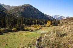 Viste dei paesaggi delle montagne in autunno, Russia di Altai Corsa Immagine Stock Libera da Diritti