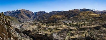 Viste del canyon di Colca Immagine Stock Libera da Diritti