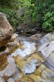 Viste del fiume e della cascata della giungla dalla piccola strada rurale del villaggio al EL l'Eden da Puerto Vallarta Messico i Immagine Stock Libera da Diritti