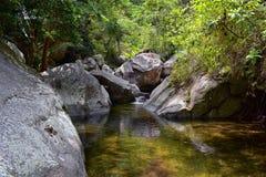 Viste del fiume e della cascata della giungla dalla piccola strada rurale del villaggio al EL l'Eden da Puerto Vallarta Messico i Immagini Stock