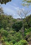 Viste del fiume e della cascata della giungla dalla piccola strada rurale del villaggio al EL l'Eden da Puerto Vallarta Messico i Immagine Stock