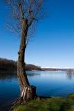 Viste del lago fotografia stock libera da diritti