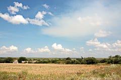 Viste del paesaggio della natura, dei campi, dei villaggi e delle strade dell'Ucraina Vista dalla finestra di automobile quando g fotografia stock libera da diritti