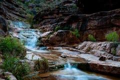 Viste del parco nazionale di Grand Canyon immagine stock libera da diritti