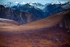 Viste del parco nazionale e della riserva, della valle e del fianco di una montagna di Kluane Fotografia Stock