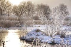 Viste dell'insenatura di inverno fotografie stock libere da diritti